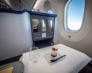 ana business class review